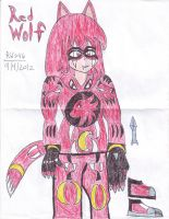 RED WOLF JASON'S COLOR HERO by RedWolf246