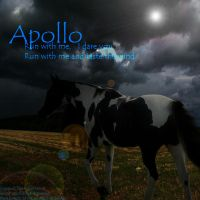 Apollo by Theliquidspoon