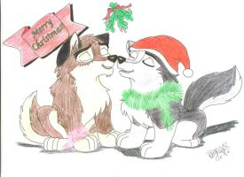 Blaze and Vega, Christmas. by DarkWolfRayness