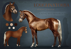 Loughnatousa by feverpaint
