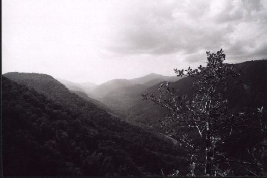 Up The Valley -landscape- by espressobsessrepress