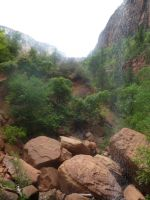 USA-Zion Canyon 4 by Afrolovertje