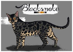Blacksmoke reference by Lionetry