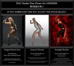 Warrior 1 - Stock - DAZ Studio Genesis Pose Preset by Andecaya