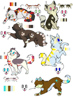Cat Adoptable Sheet ADOPT THEM NOW by Furreh-Adopts