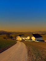 Country road, scenery and sunset by patrickjobst