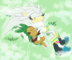 .:SilverxChespin:. Coincedence? by SEGAMew