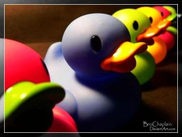 Ducks in a Row by BroChaplain