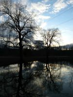 Reflections by Michies-Photographyy