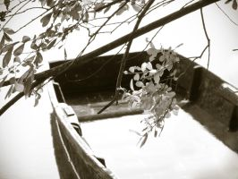 Rowboat - Barque by JeanV