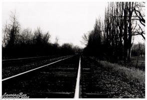 Track Fear by CasePhoto