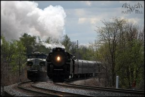 The new Norfolk Southern by DragonWolfACe