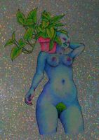 house plant by flowwwer