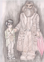 Harry and Hagrid by IrinaSelena