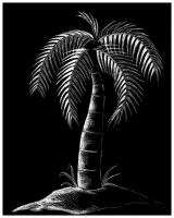 Palm IN The Night by torchdesigns