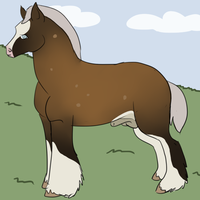old ref by luckdown