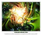 TRANSFORMATION by d-b-c