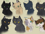 Favorite Thunderclan Cats by LiL-Lolah