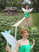 tinkerbell 3 by clefchan