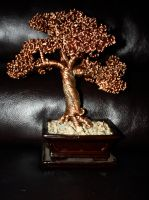 Miniature Oak by Arakhlin