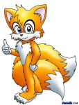 Tails all grown up by FoxTails
