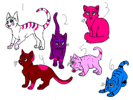 Cat adopts 9 by Tangle-Kitty