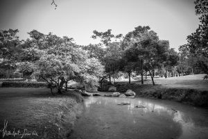 Nature magina by Thanutpat