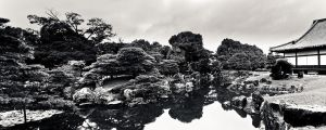 Garden of Nijo-jo by nathanspotts