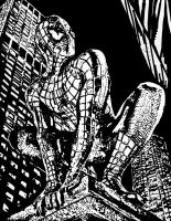 The Spiderman.. by ladyjart