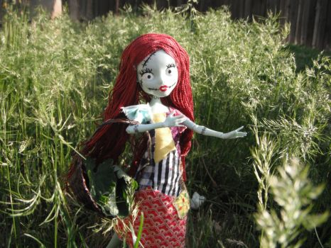 sally walking in the tall grass by shorenx3