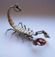 Mechanical Scorpion No 8 by AMechanicalMind