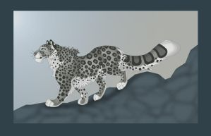 snow leopard by Whodovoodoo