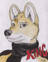 King By Janston by janston