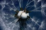 unexpected by SaraTr