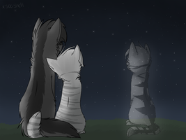 Greystripe + Silverstream + Millie by xseashell