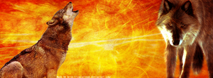 Wolves- Free Facebook Timeline Banner by IoniaFreak