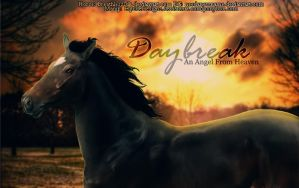Daybreak by EquideDesigns