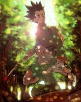Hunter x Hunter-Gon Freecs by elleinead