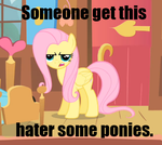 Fluttershy Loves Haters by VisageZero