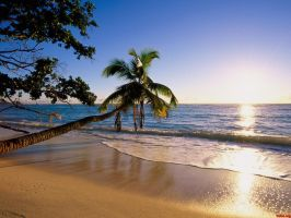 Beach by Online-Natural