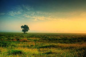 A New Day by TMPhotographia