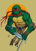 turtle mutant ninja by N0mm0