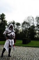 AC Brotherhood- Ezio Cosplay 2 by LadyBad