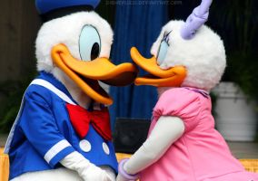 Donald and Daisy 02 by DisneyLizzi