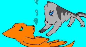 Like how I made Flametail and Jayfeather? by BerrystarLover
