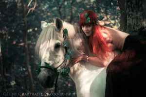 Epona and light by StormyDream