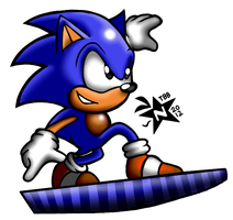 Sonic Triple Trouble: Sonic on the snowboard by NeppyNeptune