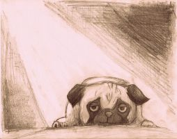 Pug in the Sun by Mielzy