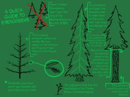 A Guide to Evergreens by cek812