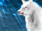 Wolf's Rain by doublEdumffwulf